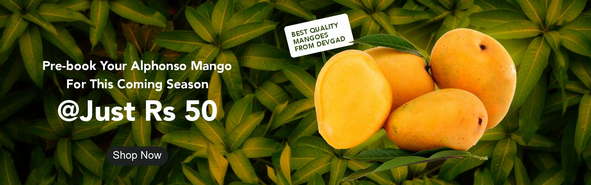 Pre-Book Alphonso Mango